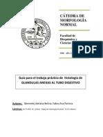 Guia de TP- Glandulas Anexas- Adriana