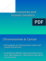 Lecture(Chromsomes and Human Genetics) Spr 2009