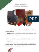 Lucrare de Laborator Nr.6 Articole de Marochinarie