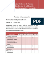 Formatos de Autoevaluaciòn 1