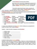 Imenice u Funkciji Atributa i Imenskog Dela Predikata