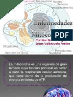 Enfermedades Mitocondriales Seminario 3 de Bioquimica
