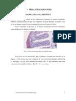 1_fisica_de_las_radiaciones.pdf