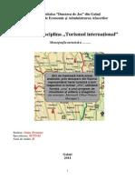 Instructiuni Proiect Turism International