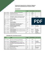 Programa para Taller de Región Ica-  FEB_ 2011