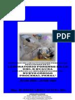 recumen anual laboratorio forense Huaura