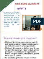 DELIMITACIÓN DEL CAMPO DEL GERENTE