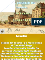 Istoria Palatelor Iosefin Timisoara