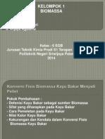 ppt biomassa