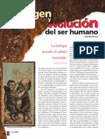 Origen y Evolucion Del Ser Humano