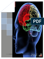 The Science Behind Memory