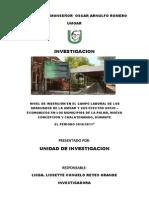 Investigacion Insercion Laboral-2011 Eco
