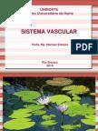 Aula Sistema Vascular