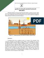 Exploatarea Gazelor de Sist Prin Metoda Fracturarii Hidraulice. Impactul Asupra Mediului