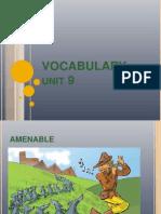 Vocabulary Unit 9