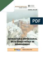 Pfm Gestion - Estructura Empresarial de Una Constructora