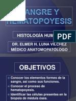Sangre y Hematopoyesis