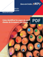 BCP - Manual Validación Completa