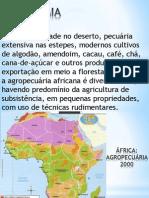 fricaeconomia-101026184807-phpapp02(1)