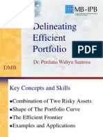 Efficient Portfolio Pws Dmb Ipb