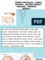 NEUROFISIOLOGIA_7