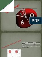 tiposdesangre-120610181631-phpapp01