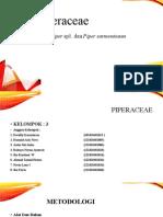 Piperaceae Kelompok 3