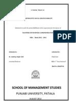 A Seminar Report Csr (1)