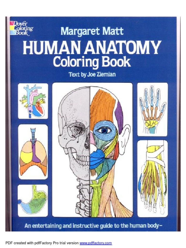Anatomy Coloring Book Dover Adobe Systems Computer File Formats