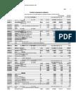 Costos Unitarios Rapas Comp. 2