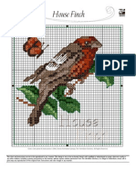 Aug House Finch Color