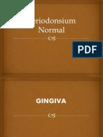 Periodonsium Normal