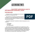 ISO 12207 Ciclo de Vida Del Software