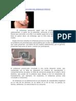 Conceptos o Definiciones Del Embarazo Precoz