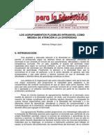 3. Agrupamientos Flexibles_Diversidad