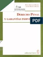 Derecho penal y garantías individuales