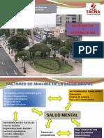 Evaluación Anual de Salud mental 2012.