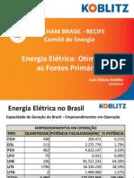 Palestra LOK AMCHAM Energia elétrica otimizando as fontes primárias 24 03 2014 1