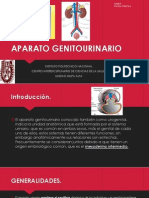 APARATO GENITOURINARIO