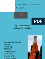 The Fundamentals of Shaolin Kung Fu