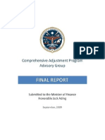 Rmi Cap Report 2009-Final