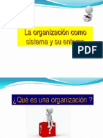 1 Organizacion Como Sistema