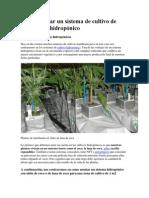 Como montar un sistema de cultivo de marihuana hidropónico.docx