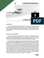 Tema 05 - Consultas a Una Tabla