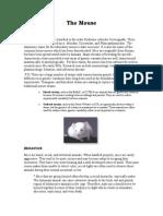 Mouse (Iws.collin.edubiopagemouse.pdf)