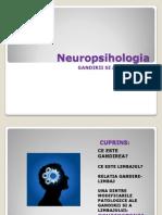 Neuropsihologia gandirii si a limbajului.pptx