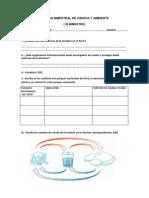 Examen Bimestral de Ciencia y Ambiente 5