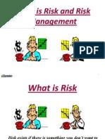 1. RISK Presentation