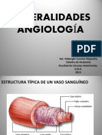 Angio Anato 1