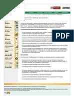Dian - Consulta arancel - Presentación